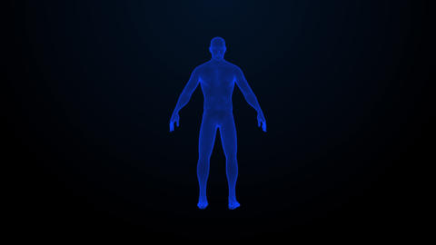 The hologram of rotating human. Blue 3D animation of human with a seamless loop Live Action
