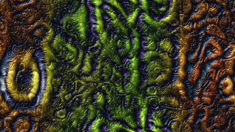 Alien skin organic vector texture Animation