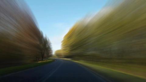 Speeding though forrest Animation