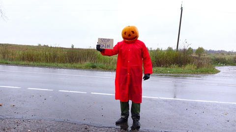 Jack Pumpkinhead stay under rain with cardboard sign, ask to stop rain Footage