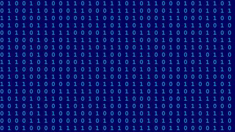 Computer Data Flow 2
