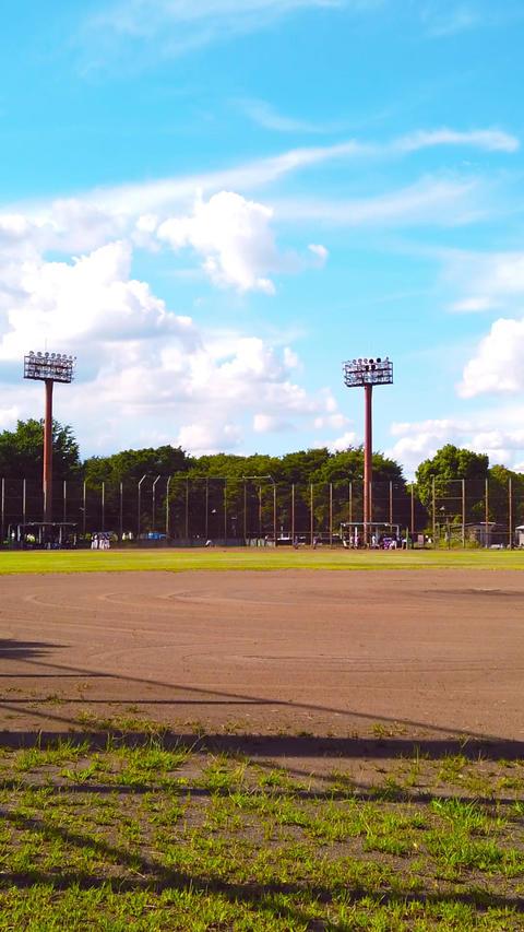 【縦長】野球場 ライブ動画