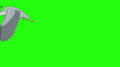 Heron flies up into the sky chroma key Videos animados