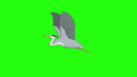 Heron flies in the sky chroma key Videos animados