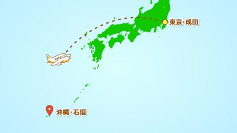 シンプルな飛行機移動の説明動画(成田発-石垣着)文字あり CG動画