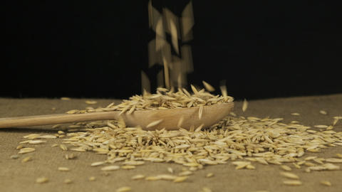 Oat grains fall into a wooden spoon and heap is poured. Slow motion Live Action