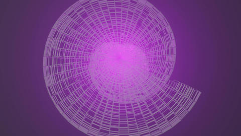 Abstract shape resembling a shone shell, wireframe design, 3d art element Animation