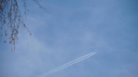 Airliner cruising high in the sky Live Action