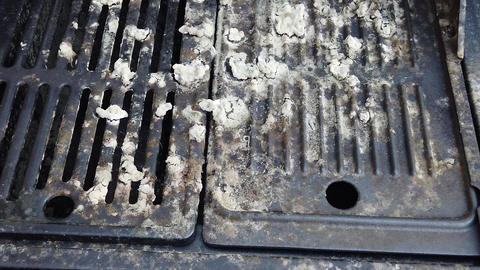 Pan shot of fungus growing on an outdoor barbecue grill Live Action