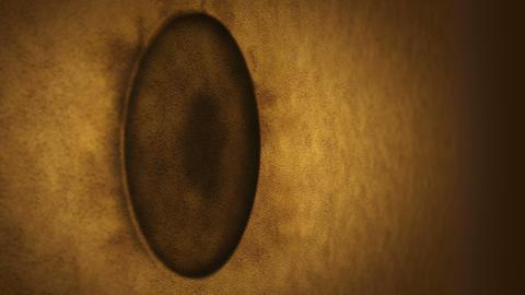 Hole in the desert. Landing on ground. Sand surface crack with hole. Smoke, Fog, Dust. Diagonally Animation