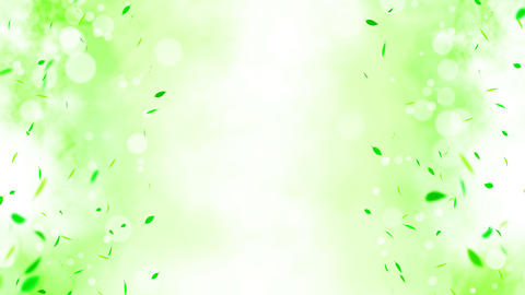 Colorful bright leaves swinging in summer background with sun flares. Beautiful nature scene. Animation
