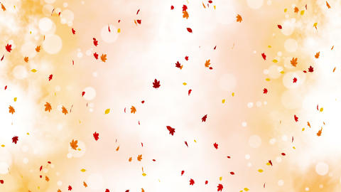 Colorful bright leaves swinging in autumnal background with sun flares. Beautiful nature scene. Animation
