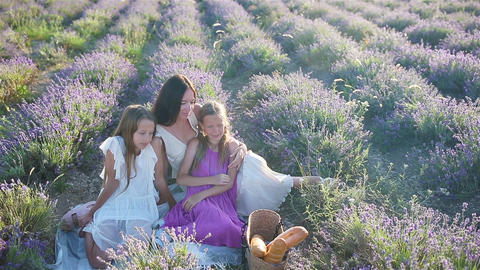 Family in lavender flowers field at sunset in white dress and hat Acción en vivo