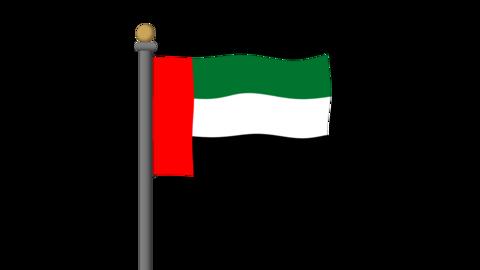 アラブの国旗 背景はアルファチャンネルです。 CG動画