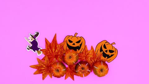 Halloween autumn decoration on pink theme appear. Stop motion Animation