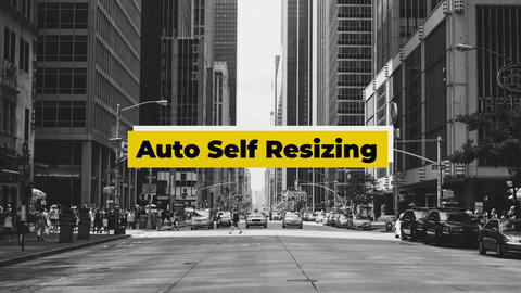 Self Resize Lower Thirds Motion Graphics Template