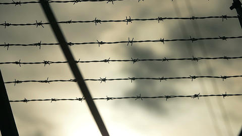 prison, barbed wire fence Footage