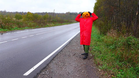 Pumpkinhead stand in panic at empty road side, clutch one head, come towards Live Action