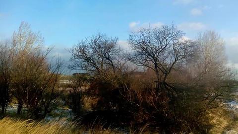 Landscape Passage
