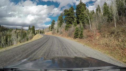 Deer cross road in front of car POV mountain 4K 970