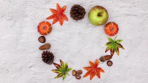 Autumn leaves and autumn yields move in circle with empty space for text. Stop motion CG動画
