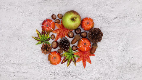 Group of autumn leaves and yields appear on white theme. Stop motion CG動画