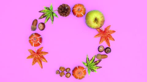 Autumn yields blink on purple theme. Stop motion CG動画
