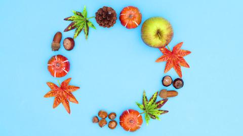 Autumn yields blink on blue theme. Stop motion CG動画