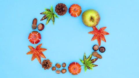 Autumn circle frame for text move on blue theme. Stop motion CG動画