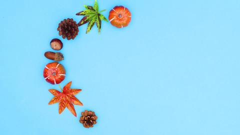 Autumn decoration make round frame for text. Stop motion CG動画