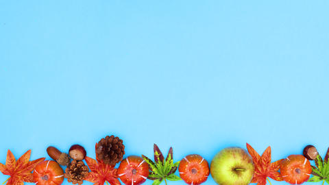 Autumn leaves and yields appear on the top of blue theme. Stop motion CG動画