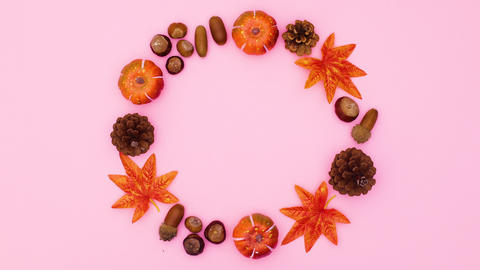 Autumn leaves and nuts move one by one in circle on pink theme. Stop motion Animation