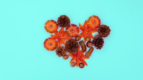 Autumn leaves, nuts and pine cones make heart. Stop motion CG動画