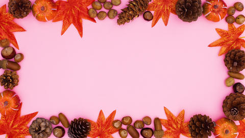 Autumn leaves, pine cones and nuts frame moving. Stop motion CG動画