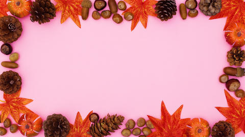 Autumn orange frame for text with nuts and leaves appear.Stop motion CG動画
