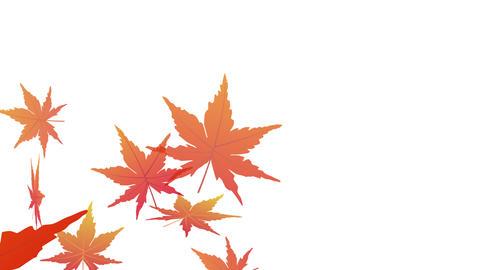 Autumn leaves animation set Animation