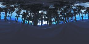 Winter Forest VR360 3D Illustration Fotografía de realidad virtual (RV) en 360°