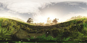 Wonderland Meadow with Firelfies VR360 3D Illustration VR 360° Photo