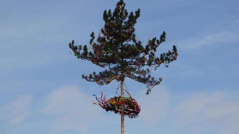 Maypole In Wind