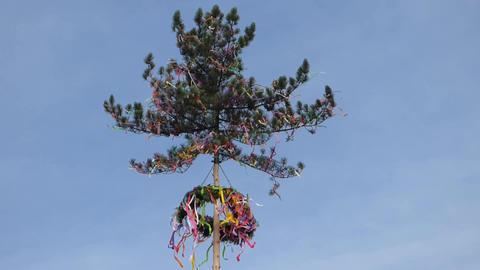 Maypole In Wind 0