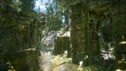 ruined ancient stone house overgrown with plants and ferns in dense green forest Live Action