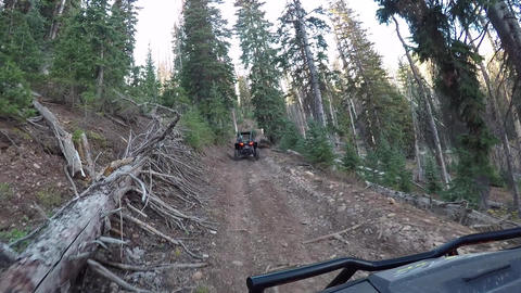 Recreation vehicle mountain forest trail POV HD 937 Footage