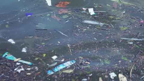 Consequences of urban water pollution Footage