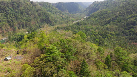Mountains with forest in the Philippines ライブ動画