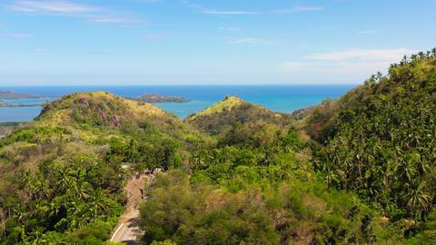 Mountains with rainforest. Philippines, Mindanao ライブ動画