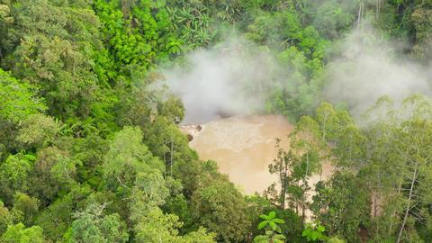 Mud volcanic lake Agco. Mindanao, Philippines ライブ動画