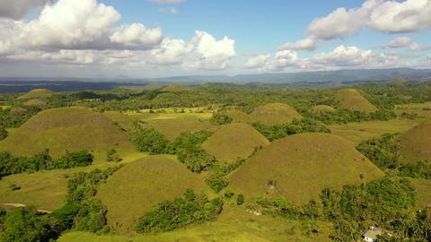Chocolate hills.Bohol Philippines ライブ動画