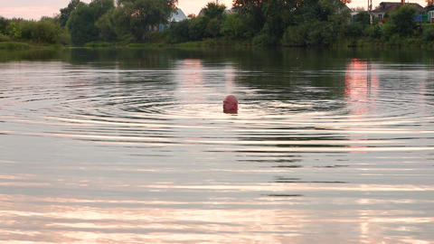 26-121-1-S- A Man Swims And Rests On The Lake. 2