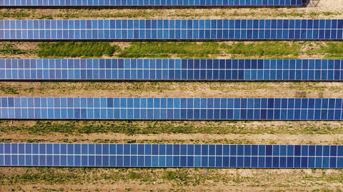 Field with solar panels for power producing. Aerial view of solar power station Live Action