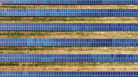 Rows of solar panels on the field for power producing. Renewable energy and energy saving Aerial Live Action
